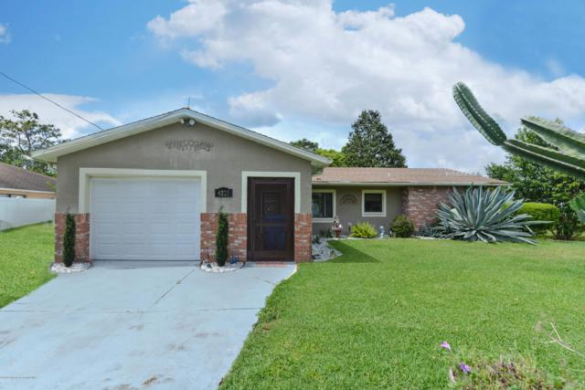 4225 Dristol Avenue, Spring Hill, FL 34609 (MLS #2200394) :: The Hardy Team - RE/MAX Marketing Specialists