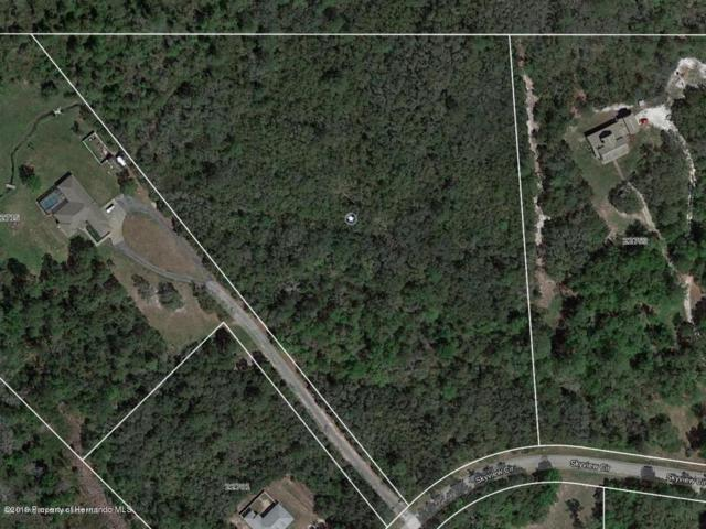 22729 Skyview Circle, Brooksville, FL 34602 (MLS #2200435) :: The Hardy Team - RE/MAX Marketing Specialists