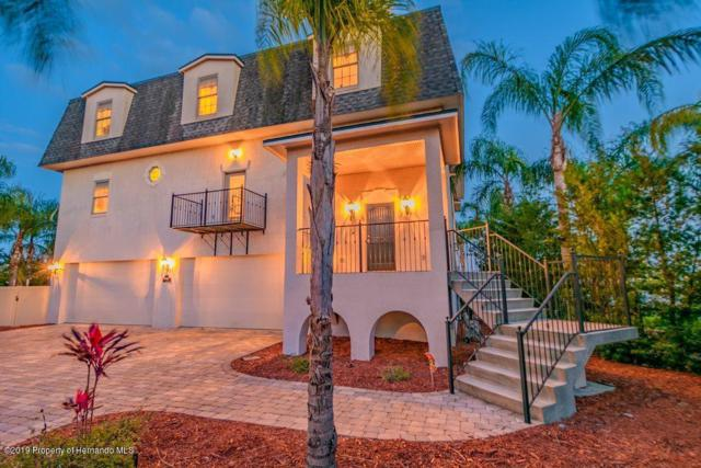 4407 Flexer Drive, Hernando Beach, FL 34607 (MLS #2200454) :: The Hardy Team - RE/MAX Marketing Specialists