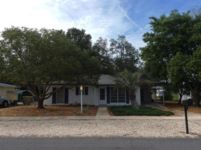 6816 Treehaven Drive, Spring Hill, FL 34606 (MLS #2200503) :: The Hardy Team - RE/MAX Marketing Specialists