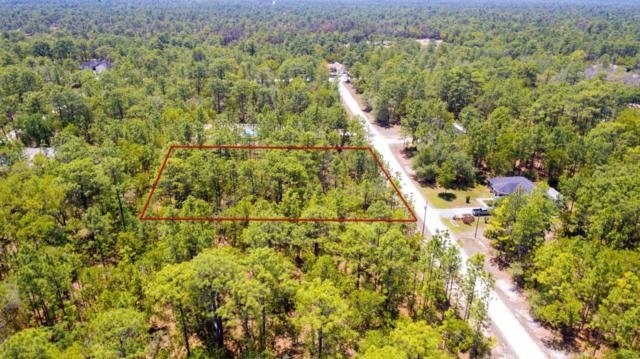 17450 Macassar Road, Weeki Wachee, FL 34614 (MLS #2200538) :: The Hardy Team - RE/MAX Marketing Specialists