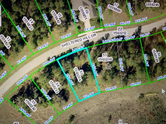 0000 Sheltered Hill Drive, Brooksville, FL 34601 (MLS #2200720) :: The Hardy Team - RE/MAX Marketing Specialists