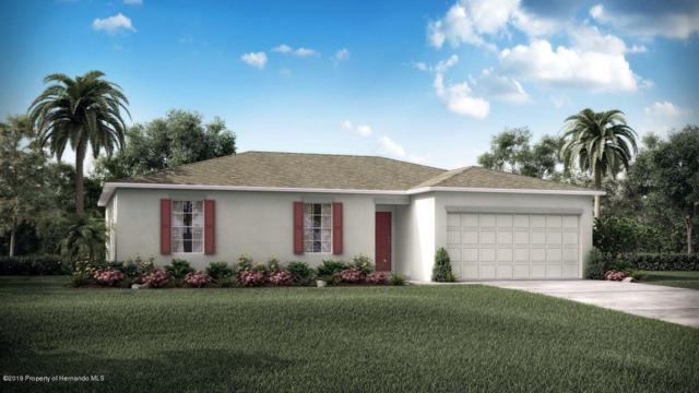 4096 Thunderbird Avenue, Spring Hill, FL 34606 (MLS #2200827) :: The Hardy Team - RE/MAX Marketing Specialists