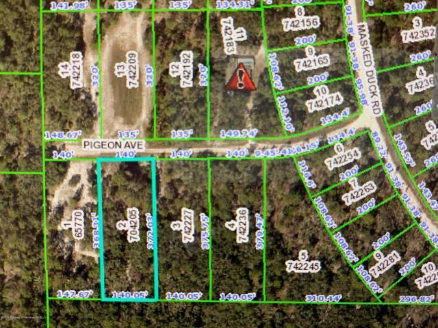 11132 Pigeon Avenue, Brooksville, FL 34613 (MLS #2201138) :: The Hardy Team - RE/MAX Marketing Specialists