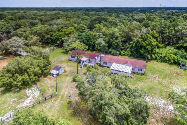 14622 Family Trail, Hudson, FL 34669 (MLS #2201315) :: The Hardy Team - RE/MAX Marketing Specialists