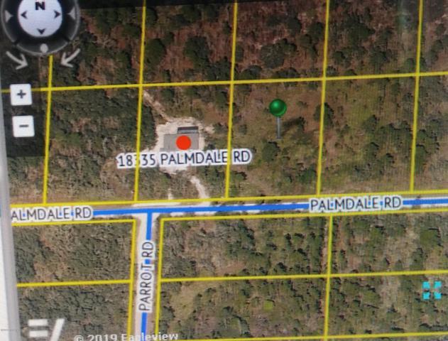 0 Palmdale Road #1, Weeki Wachee, FL 34614 (MLS #2201317) :: The Hardy Team - RE/MAX Marketing Specialists