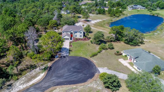 11000 Gig Avenue, Weeki Wachee, FL 34613 (MLS #2201394) :: The Hardy Team - RE/MAX Marketing Specialists
