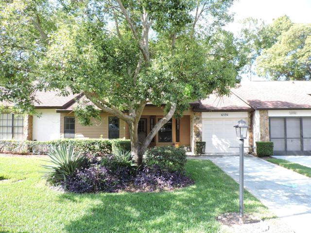 6594 Andromeda Way, Spring Hill, FL 34606 (MLS #2201520) :: The Hardy Team - RE/MAX Marketing Specialists
