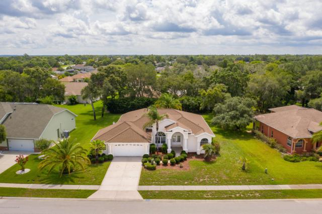 3416 Indian River Street, Spring Hill, FL 34609 (MLS #2201798) :: The Hardy Team - RE/MAX Marketing Specialists