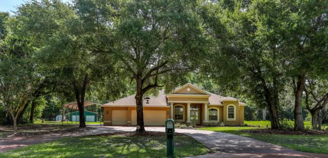 10550 Marianne Lane, New Port Richey, FL 34654 (MLS #2201850) :: The Hardy Team - RE/MAX Marketing Specialists