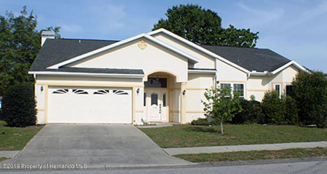 1130 S Softwind Loop, Lecanto, FL 34461 (MLS #2201896) :: The Hardy Team - RE/MAX Marketing Specialists