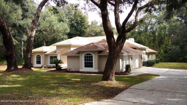 10126 Weeks Drive, Brooksville, FL 34601 (MLS #2201911) :: The Hardy Team - RE/MAX Marketing Specialists