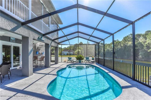 4034 Jewfish, Hernando Beach, FL 34607 (MLS #2202036) :: The Hardy Team - RE/MAX Marketing Specialists