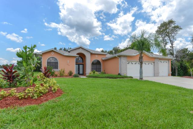 12042 Sapphire Drive, Spring Hill, FL 34609 (MLS #2202215) :: The Hardy Team - RE/MAX Marketing Specialists
