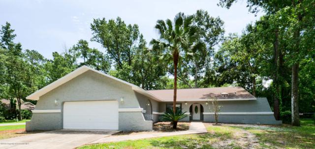1505 Don Jr. Avenue, Brooksville, FL 34601 (MLS #2202282) :: The Hardy Team - RE/MAX Marketing Specialists
