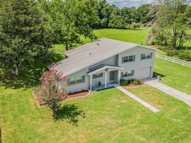 18302 Rogerland Road, Spring Hill(Pasco), FL 34610 (MLS #2202320) :: The Hardy Team - RE/MAX Marketing Specialists