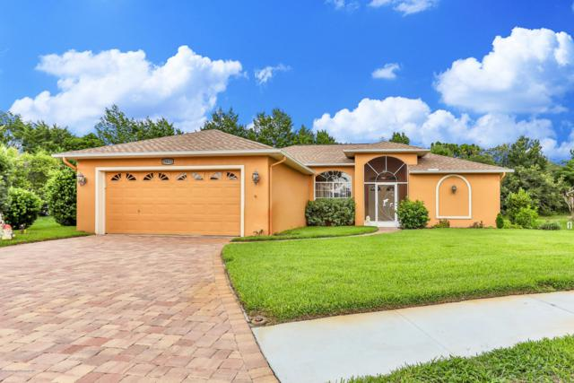 18652 Quite Lane, Hudson, FL 34667 (MLS #2202391) :: The Hardy Team - RE/MAX Marketing Specialists