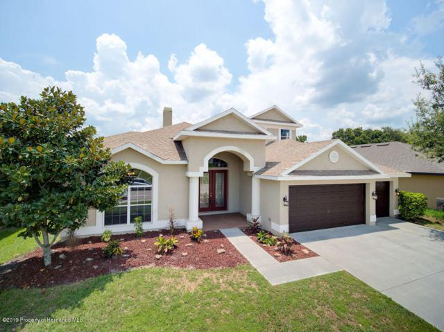 4717 Royal Birkdale Way, Wesley Chapel, FL 33543 (MLS #2202417) :: The Hardy Team - RE/MAX Marketing Specialists