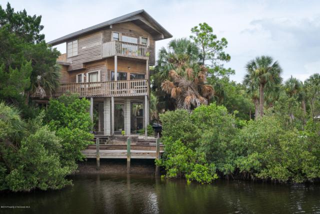 10701 Pine Island Drive, Weeki Wachee, FL 34607 (MLS #2202434) :: The Hardy Team - RE/MAX Marketing Specialists