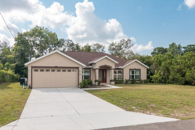 2008 Deborah Drive, Spring Hill, FL 34609 (MLS #2202442) :: The Hardy Team - RE/MAX Marketing Specialists