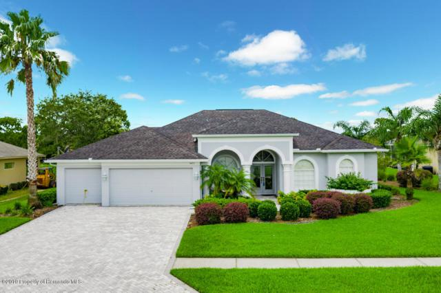 3477 Indian River Street, Spring Hill, FL 34609 (MLS #2202642) :: The Hardy Team - RE/MAX Marketing Specialists