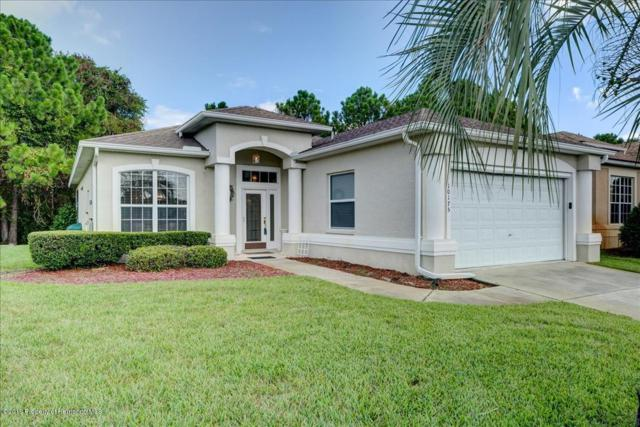 10175 Holly Berry Drive, Weeki Wachee, FL 34613 (MLS #2202690) :: The Hardy Team - RE/MAX Marketing Specialists
