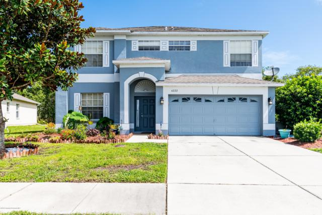 4222 Braemere Drive, Spring Hill, FL 34609 (MLS #2202713) :: The Hardy Team - RE/MAX Marketing Specialists