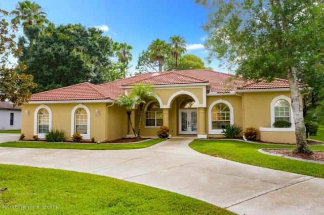 4381 Hunters Pass, Brooksville, FL 34609 (MLS #2202784) :: The Hardy Team - RE/MAX Marketing Specialists