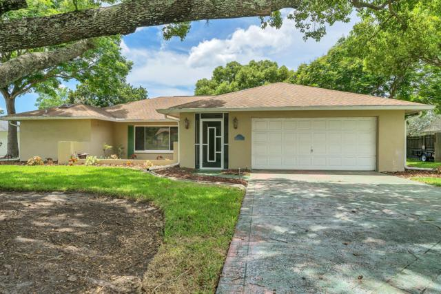 5141 Lydia Court, Spring Hill, FL 34608 (MLS #2202925) :: The Hardy Team - RE/MAX Marketing Specialists