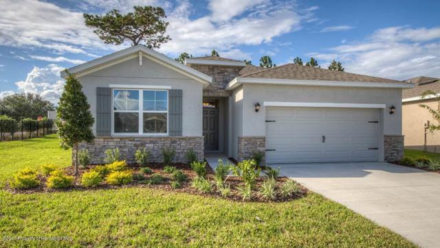 5057 Gevalia Drive, Brooksville, FL 34604 (MLS #2202999) :: The Hardy Team - RE/MAX Marketing Specialists