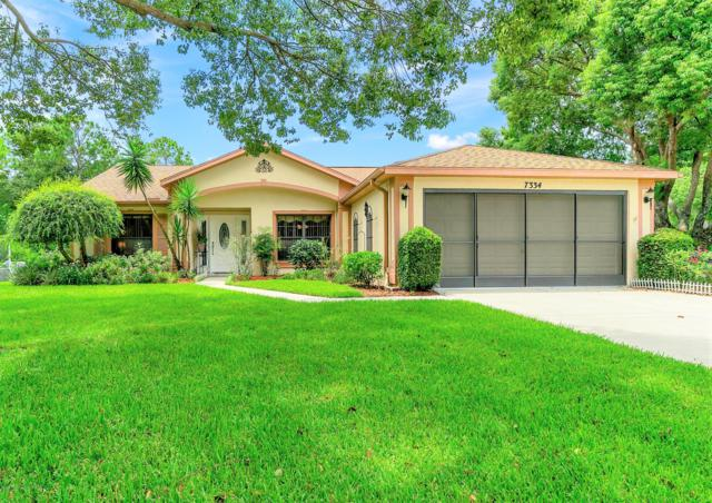 7334 Clearmeadow Drive, Spring Hill, FL 34606 (MLS #2203172) :: The Hardy Team - RE/MAX Marketing Specialists