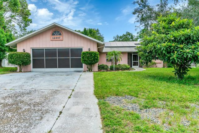 12447 Spreading Oak Drive, Spring Hill, FL 34609 (MLS #2203202) :: The Hardy Team - RE/MAX Marketing Specialists