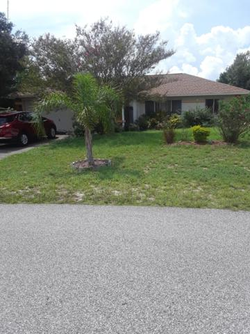4115 Candler Avenue, Spring Hill, FL 34609 (MLS #2203205) :: The Hardy Team - RE/MAX Marketing Specialists