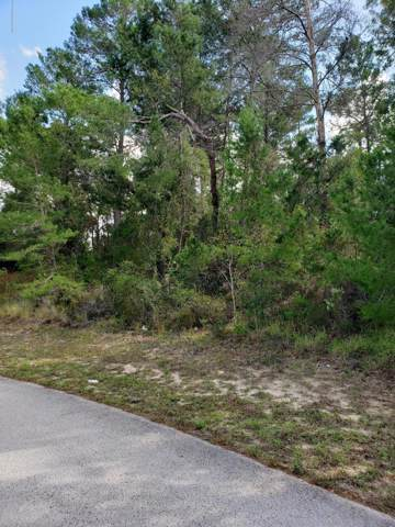 0 Hanley Drive, Spring Hill, FL 34609 (MLS #2203338) :: 54 Realty