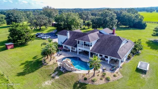 14151 Buczak Road, Brooksville, FL 34614 (MLS #2203854) :: The Hardy Team - RE/MAX Marketing Specialists