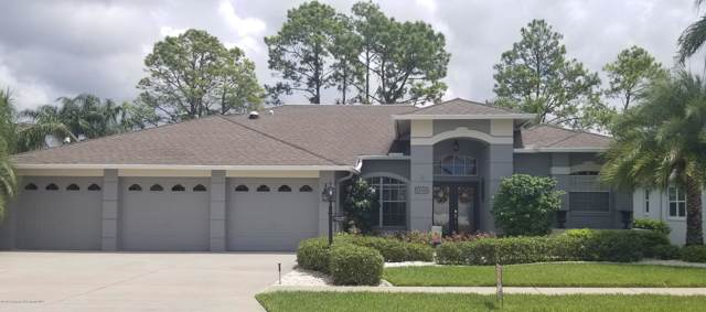 18146 Nestlebranch Court, Hudson, FL 34667 (MLS #2203905) :: The Hardy Team - RE/MAX Marketing Specialists