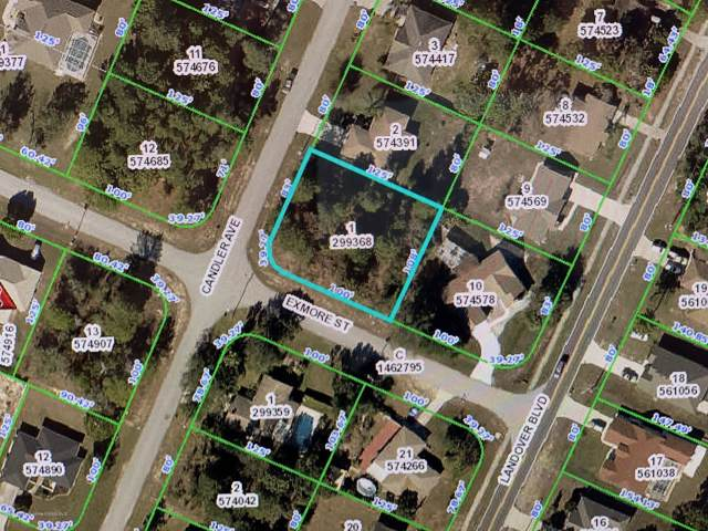 0 Exmore Street, Spring Hill, FL 34609 (MLS #2203986) :: The Hardy Team - RE/MAX Marketing Specialists