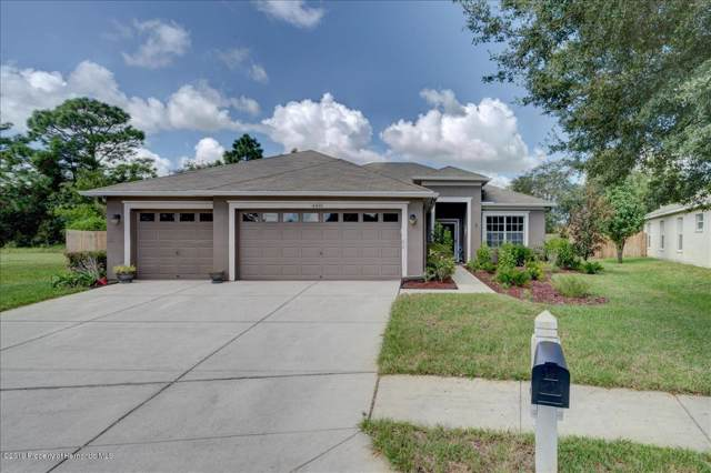 4491 Ayrshire Drive, Spring Hill, FL 34609 (MLS #2204049) :: The Hardy Team - RE/MAX Marketing Specialists