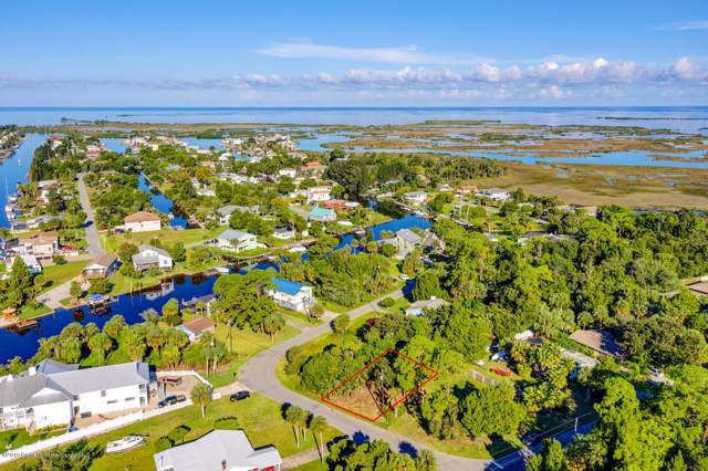 Lot 12 Pine Dale Court, Hernando Beach, FL 34607 (MLS #2204349) :: The Hardy Team - RE/MAX Marketing Specialists