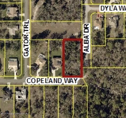 LOT 3 Copeland Way, Brooksville, FL 34604 (MLS #2204477) :: The Hardy Team - RE/MAX Marketing Specialists
