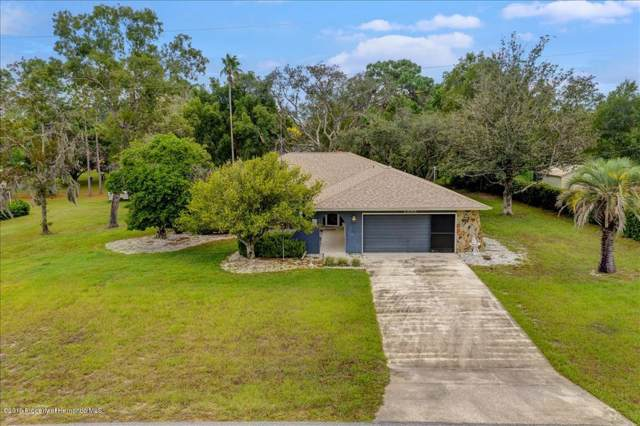 1355 Alameda Drive, Spring Hill, FL 34609 (MLS #2204564) :: The Hardy Team - RE/MAX Marketing Specialists