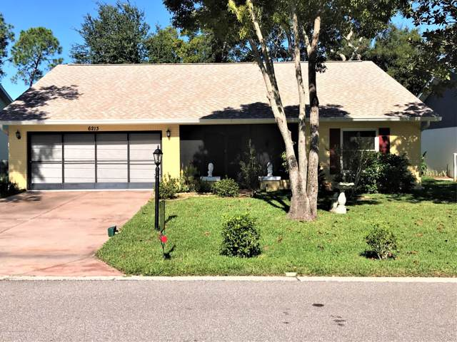 6213 Burning Tree Lane, Spring Hill, FL 34606 (MLS #2204608) :: The Hardy Team - RE/MAX Marketing Specialists