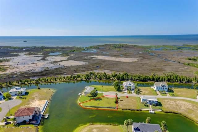 3346 Bluefish Drive, Hernando Beach, FL 34607 (MLS #2204685) :: The Hardy Team - RE/MAX Marketing Specialists