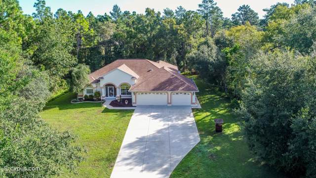 14117 Linden Drive, Spring Hill, FL 34609 (MLS #2204755) :: The Hardy Team - RE/MAX Marketing Specialists