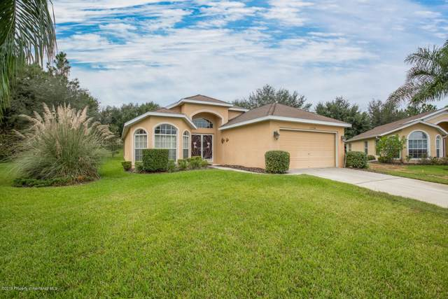 11554 New Haven Drive, Spring Hill, FL 34609 (MLS #2204807) :: Premier Home Experts