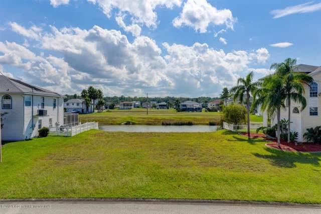 Lot 39 Cobia Drive, Hernando Beach, FL 34607 (MLS #2205134) :: The Hardy Team - RE/MAX Marketing Specialists