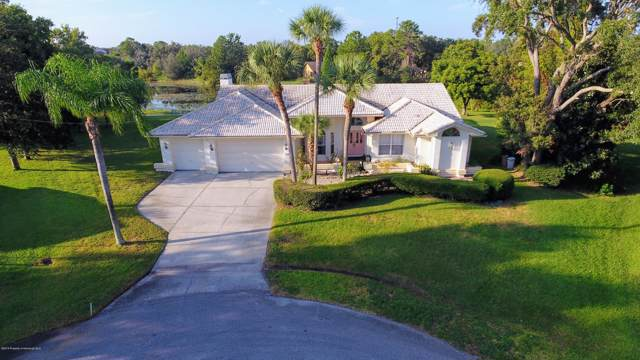7038 Mayhill Court, Spring Hill, FL 34606 (MLS #2205141) :: Premier Home Experts