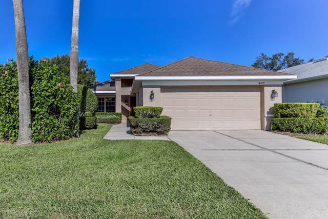 14499 Tamarind Loop, Spring Hill, FL 34609 (MLS #2205377) :: The Hardy Team - RE/MAX Marketing Specialists