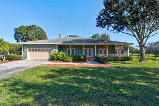 16305 Mcglamery Road, Odessa(Hillsborough), FL 33556 (MLS #2205533) :: The Hardy Team - RE/MAX Marketing Specialists