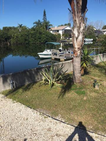 3305 Shoal Line Boulevard, Hernando Beach, FL 34607 (MLS #2205538) :: 54 Realty